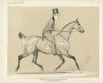 Lord Ponsonby