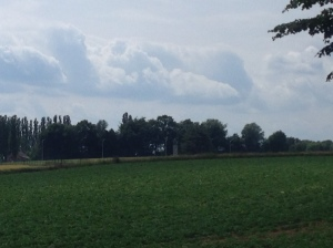 These were fields most of the fighting took place with in in the Battle of Quatre-Bras